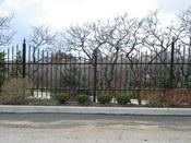 Iron Fence 12